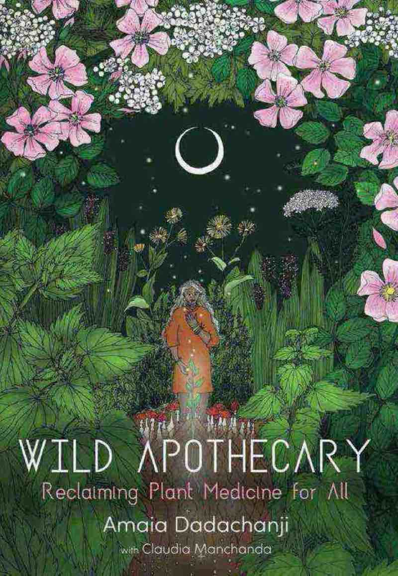 Wild Apothecary: Reclaiming Plant Medicine for All